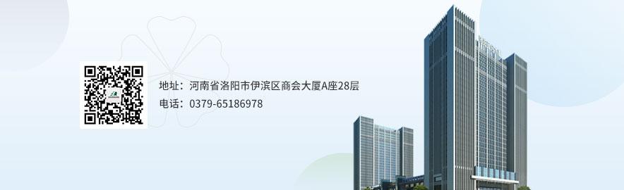 申泰控股集团